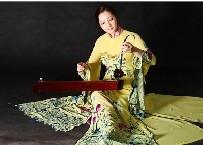 Đông đảo công chúng tham dự những ngày văn hóa Việt Nam tại Mỹ
